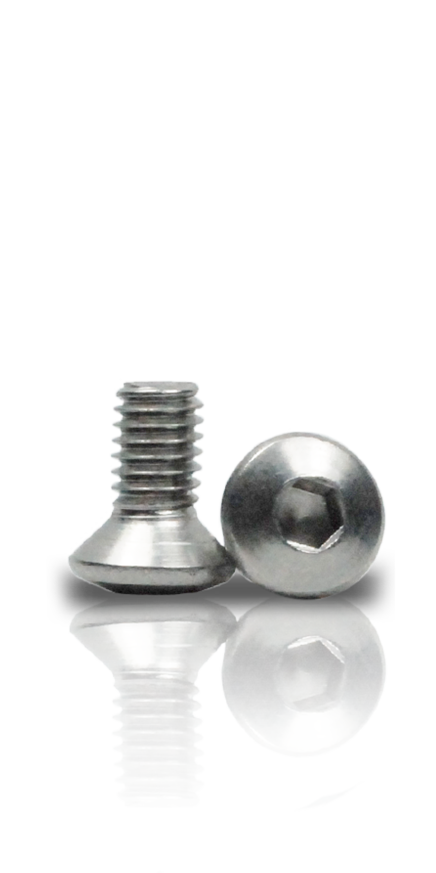 Viti per accessori alluminio 10
